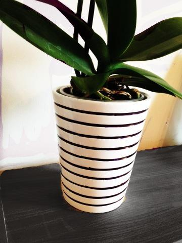 diy planter ikea
